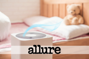 The Best Humidifiers to Buy at Every Price Point